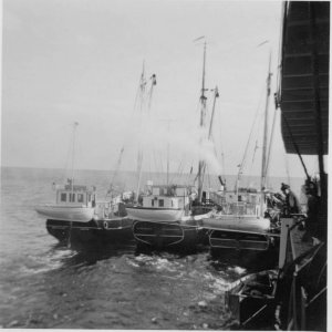 M/S  ELSE REITH, aground