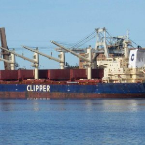 Clipper Grace