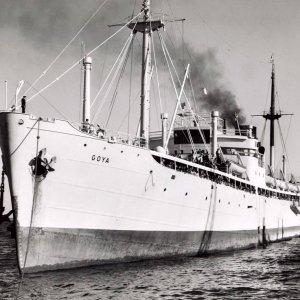 www.shipsnostalgia.com