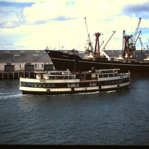 historic Ferry  Toroa- Auckland