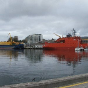 Oceanic Viking and Aurora Australis