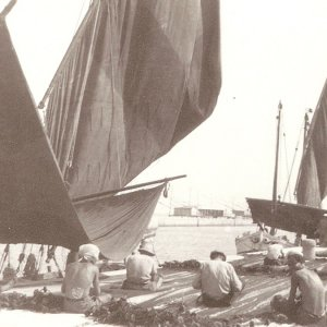 Harbour of Cesenatico in the first half of 1900