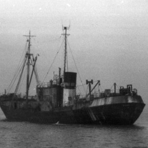 Unknown Hull trawler