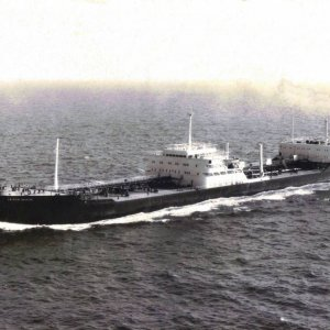 British Aviator