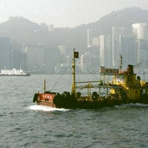 In Kowloon Harbour