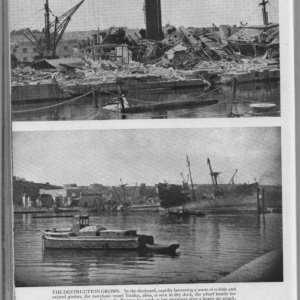 Malta  - March  1942  -  Troilus and Pampas