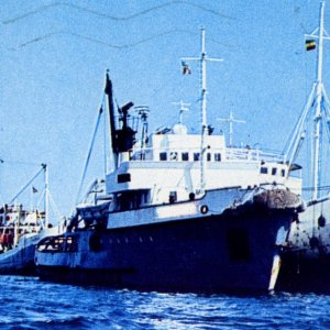 unknown tug at Massawa