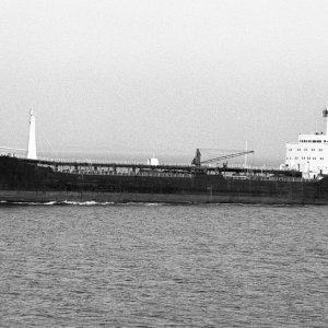 BRITISH IVY passing Portishead 21.11.70 Malcolm Cranfield.jpg