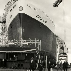 Cellana Launch Party (1968)